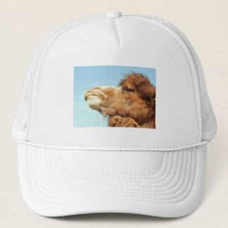 Chameau - casquette