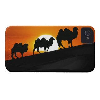 Chameaux de désert au coucher du soleil étui iPhone 4