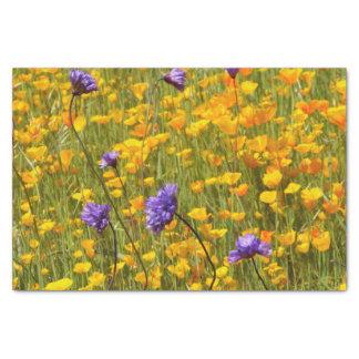 Champ de tissu de cadeau de pavots et de fleurs papier mousseline