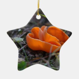Champignon de peau d'orange, aurantia d'Aleuria Ornement Étoile En Céramique