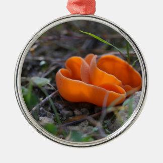 Champignon de peau d'orange, aurantia d'Aleuria Ornement Rond Argenté