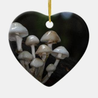 Champignon de porcelaine, mucida d'Oudemansiella Ornement Cœur En Céramique