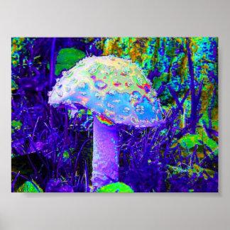 champignon psychédélique poster
