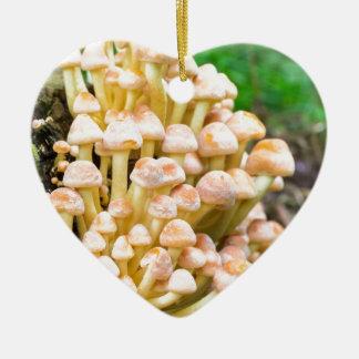 Champignons de jaune orange de groupe dans la ornement cœur en céramique