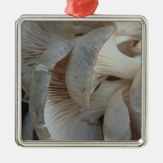 Champignons d'huître ornement carré argenté