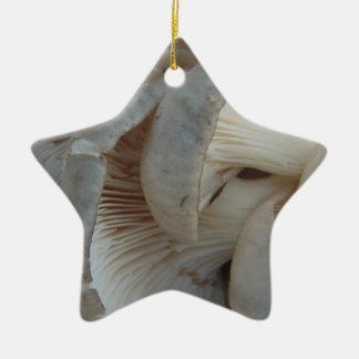 Champignons d'huître ornement étoile en céramique