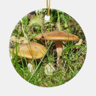 Champignons sauvages ornement rond en céramique
