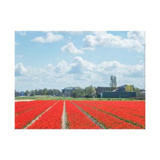Champs de tulipe dans la copie de toile de la