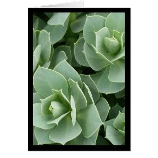 Chanson de fleurs de vert de solénoïde. Carte de