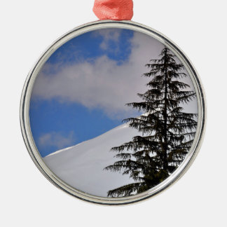 Chasse d'arbre de Noël Ornement Rond Argenté
