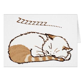 chat 2 de sommeil carte de vœux