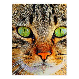Chat aux yeux verts fascinant carte postale