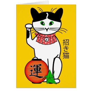 Chat chanceux avec la carte de lanterne