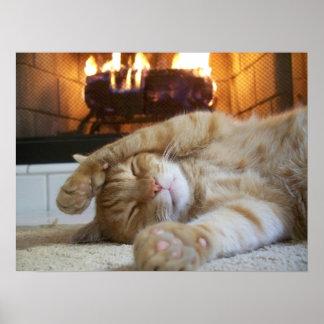 Chat de cheminée