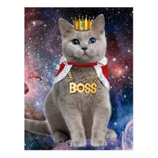 chat de roi dans l'espace carte postale
