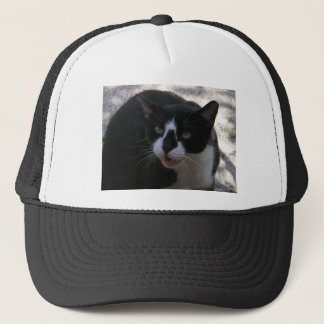 Chat d'Oreo Casquette