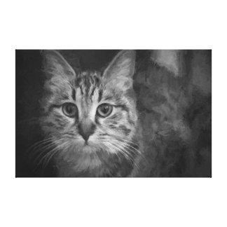 Chat en noir et blanc toiles