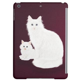 Chat et chaton blancs,