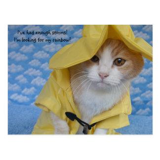 Chat/Kitty dans l'imperméable jaune de polissoir Carte Postale