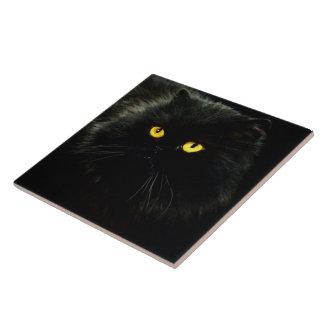 Chat noir carreau