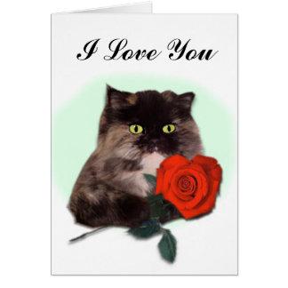 Chat persan avec la carte de rose rouge