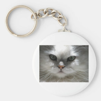 Chat persan de chinchilla porte-clés