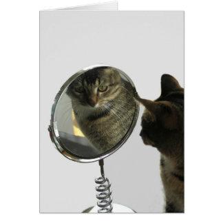 Chat regardant dans la carte de voeux de miroir