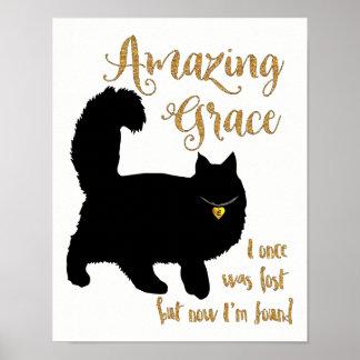Chat secouru par grâce extraordinaire poster