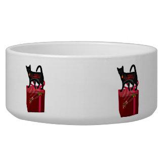 Chat sur un bol d'aliment pour animaux familiers d bol pour chien