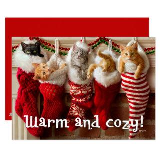 Chatons faits sur commande de Noël de la photo | Carton D'invitation 12,7 Cm X 17,78 Cm
