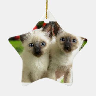 Chatons jumeaux ornement étoile en céramique