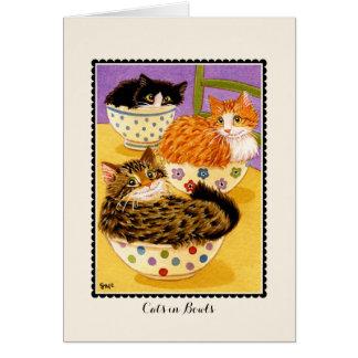 Chats dans le  de carte de voeux de cuvettes