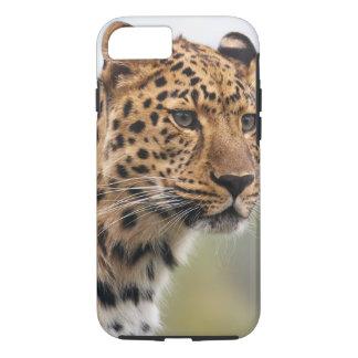 Chats sauvages de léopard coque iPhone 7