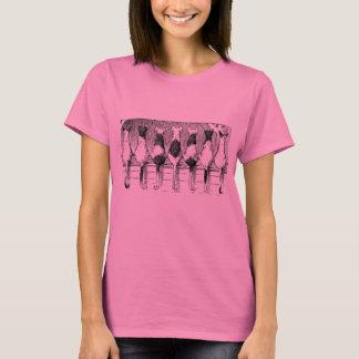 Chats se reposant sur un T-shirt de barrière