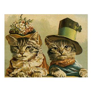 Chats victoriens vintages dans des chapeaux, humou cartes postales