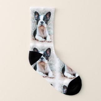 Chaussettes de chien de bouledogue français