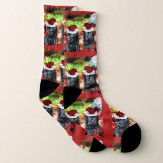 Chaussettes de chien de chiens d'arrêt de Labrador