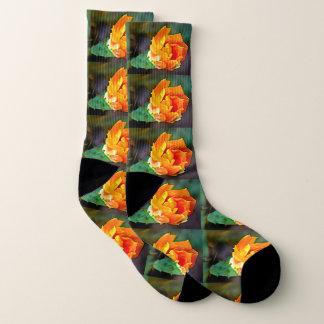 Chaussettes unisexes de fleur orange de cactus