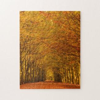 Chemin à travers la forêt dans le puzzle de