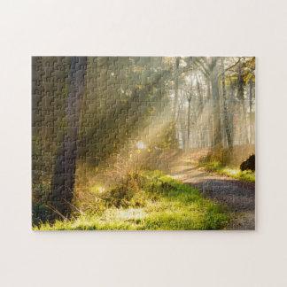 Chemin dans la forêt avec des rayons de lumière du puzzle