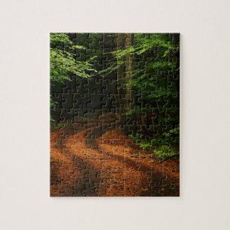 chemin de lifes puzzle