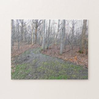 Chemin moussu à travers les bois puzzle