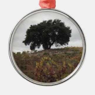 Chêne dans le vignoble d'automne ornement rond argenté