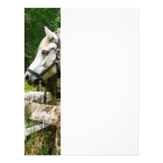 Cheval blanc regardant loin prospectus 21,6 cm x 24,94 cm