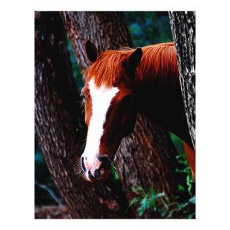 Cheval dans la forêt prospectus 21,6 cm x 24,94 cm