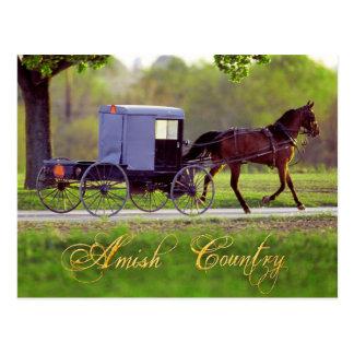 Cheval et avec des erreurs amish, Lancaster, PA Carte Postale
