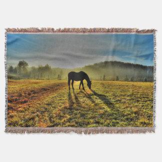 Cheval frôlant au lever de soleil en photo couvertures