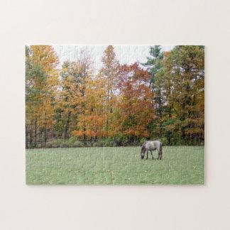 Cheval islandais dans le puzzle d'automne