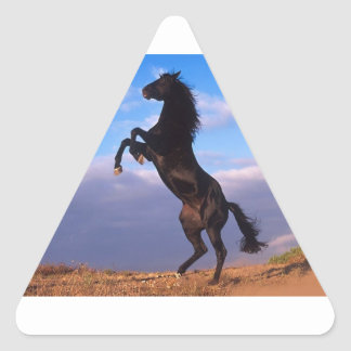 Cheval noir d'étalon sticker triangulaire