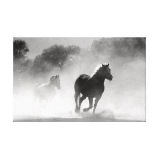 Chevaux courants en noir et blanc. toiles